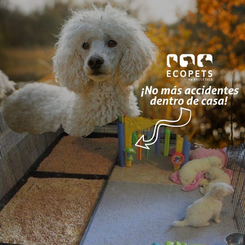 Arena ecológica para mascotas – Presentación de 3.5 kilos – Ecopets