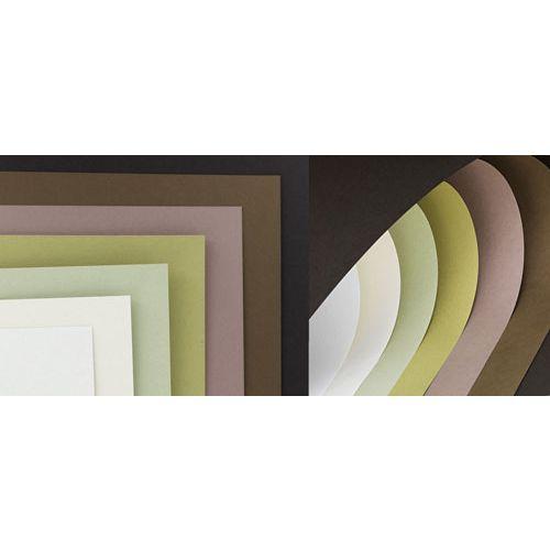 Cartulinas de tamaño carta de Kiwi, Almendra, Café, Aceituna – 250 gramos – Diferentes colores