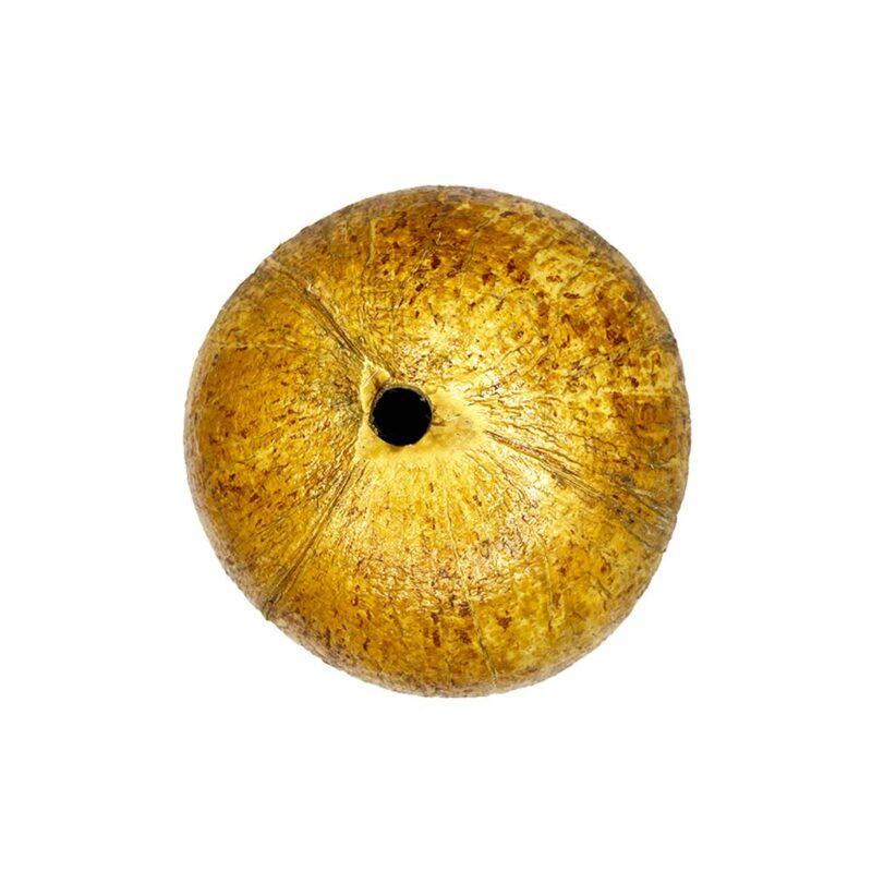 Maceta Colgante Natural de Cáscara de Coco