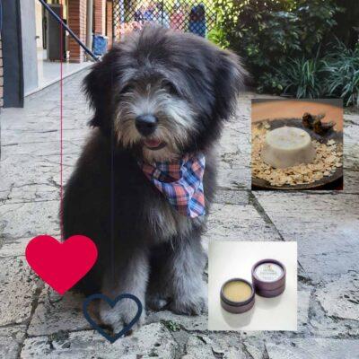 Día del Amor – Kit mascotas- Bandana gato y perro – Bálsamo huellitas – Jabón