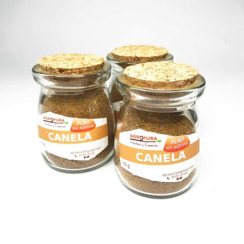 Canela – Especia pura en polvo – 40g – Agropura