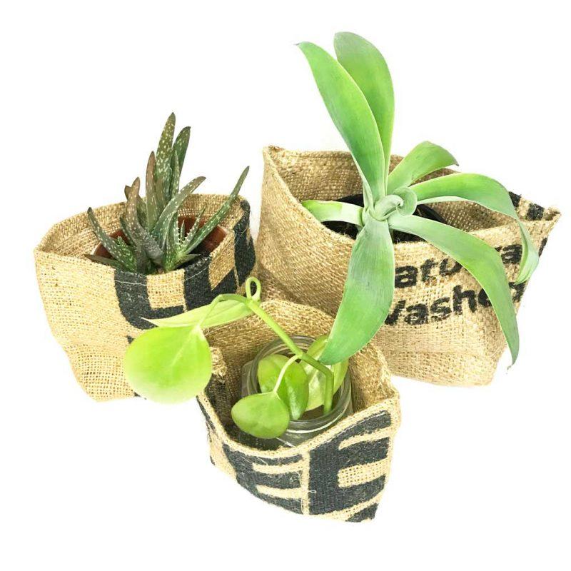 Portamacetas y Macetas Biodegradables y Compostables – Set de 3 Tamaños